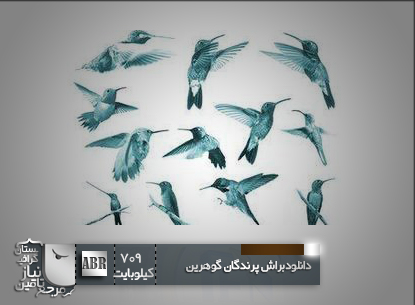 براش پرندگان با بال های گوهرین